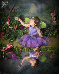 Robin - The Fairy Experience @ Spence Photography