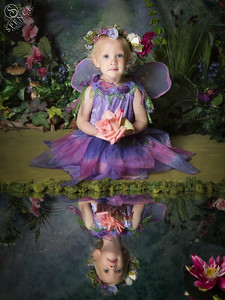 Maisy - The Fairy Experience in St Boswells