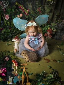 Arabella - The Fairy Experience in St Boswells