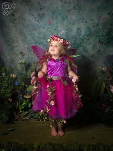 Scarlett - The Fairy Experience in St Boswells