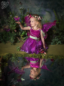 Elsie - The Fairy Experience in St Boswells