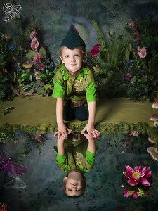 Joshua - The Fairy Experience in St Boswells
