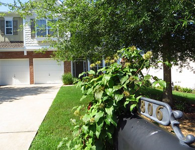 The Falls At Mill Creek Canton Home For Sale (1)