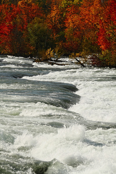 Image #4577<br /> Upper rapids just before the American Falls ~ Niagara Falls, N. Y.