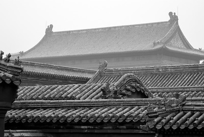 Timeless Rooftops