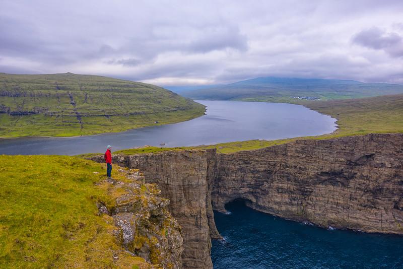 Faroe Zander