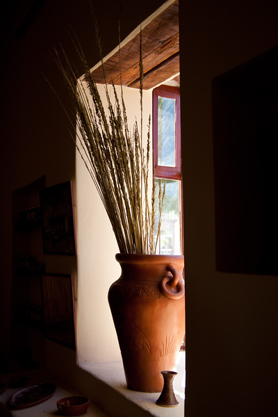 Jug of Tall Grass