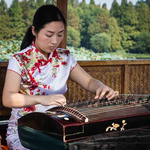 Guzheng Musician