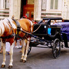 A horse and carriage await their next patron in the busy square outisde the Florence basilica.