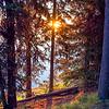 Sun Setting Over Yellowstone Lake