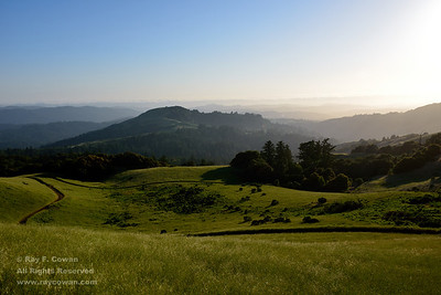 Mindego Hill and the Pacific Ocean, Coast Ranges, Santa Clara County, California