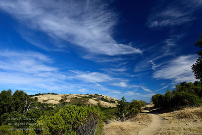 Golden hills of California on a late summer afternoon, Coast Ranges, Santa Clara County, California