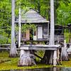 Swamp House720x720