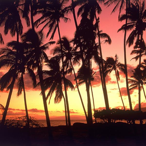 Hawaiian_Sunset