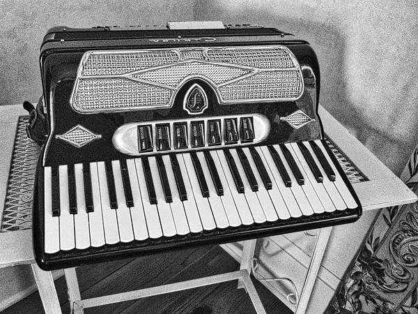 0-1010256 accordian