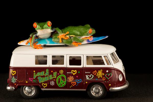 FrogsCh7-43__Frogscapes605_Cuchara_1589_122916_183851_5DM3L