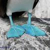 Blue-footed Booby, Espanola (Hood) Is.<br /> Sept.9, 2007<br /> ©Peter Candido 2008.  All rights reserved