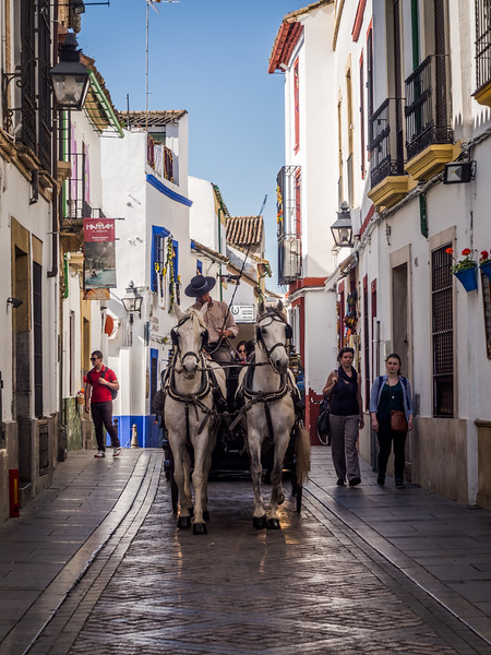 Carriage Ride, Córdoba