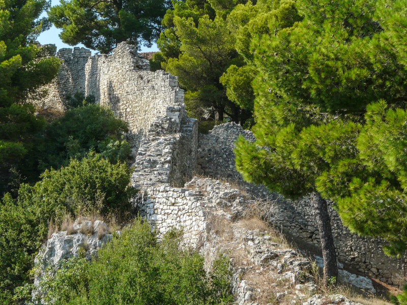 Wall Ruins and Pines, Berat