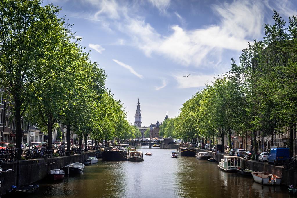 Afternoon Glory, Amsterdam
