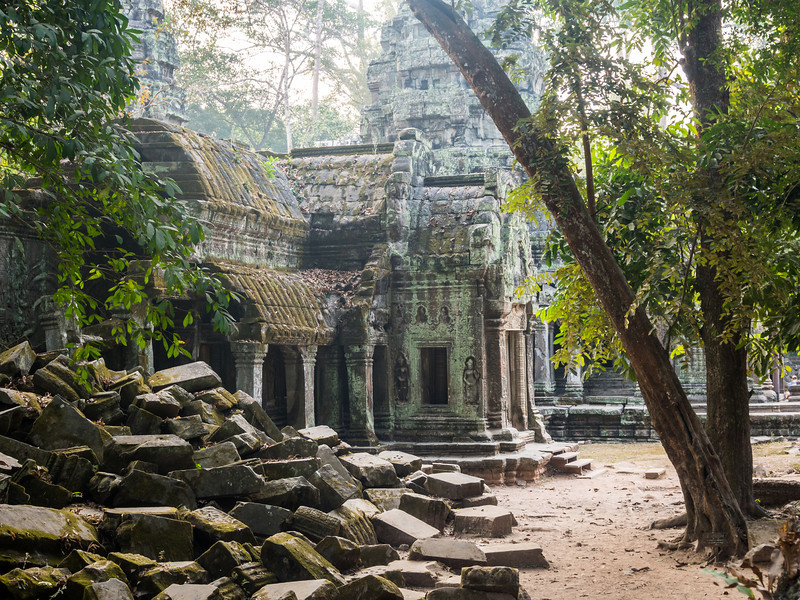 Rubble of Ta Prohm, Angkor, Cambodia