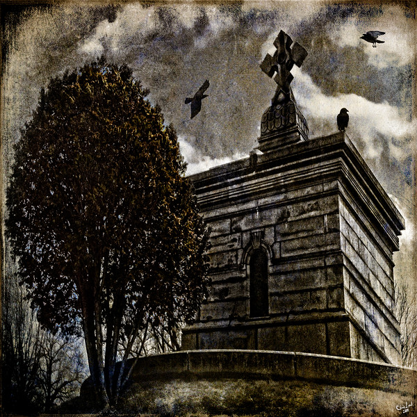 The Raven's Roost