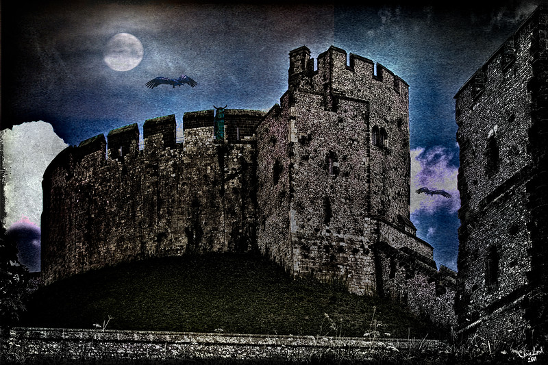 Moonlight Watch