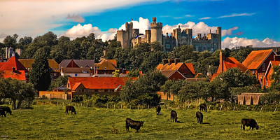 Arundel Castle with Cows in the Foreground