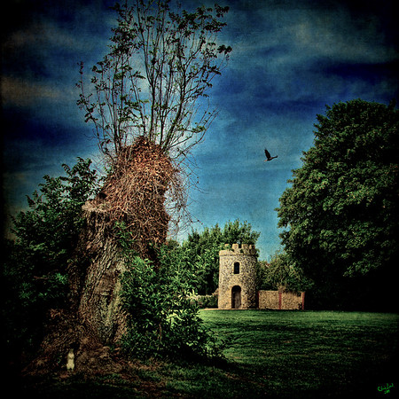 The Priory Garden