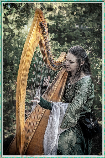 The Celtic Harpist