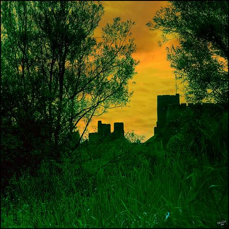 A Magical Glade Near Arundel