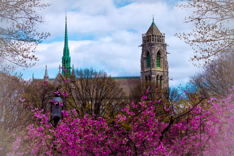 Spring At The Cathedral