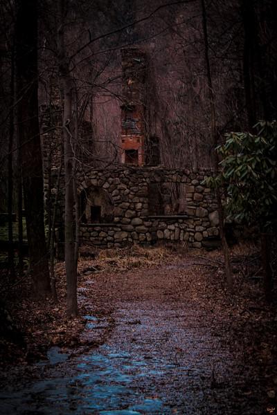 Woodlland Ruins