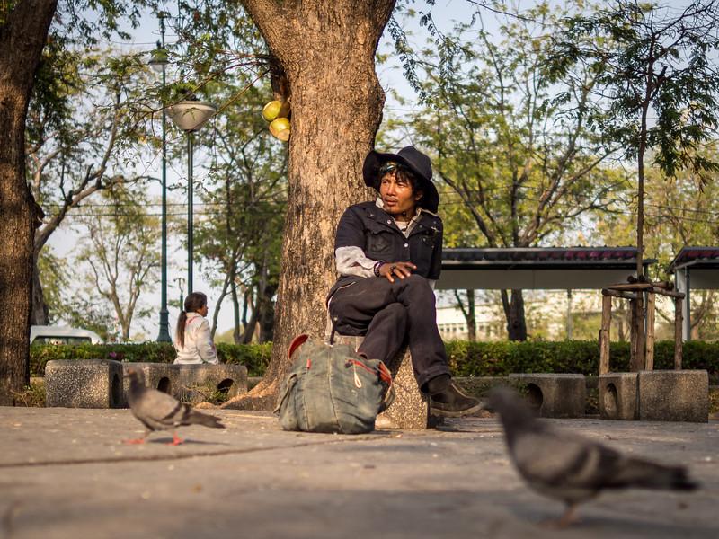 Pigeon Man, Bangkok