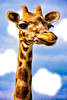 Miss Gertie the Giraffe
