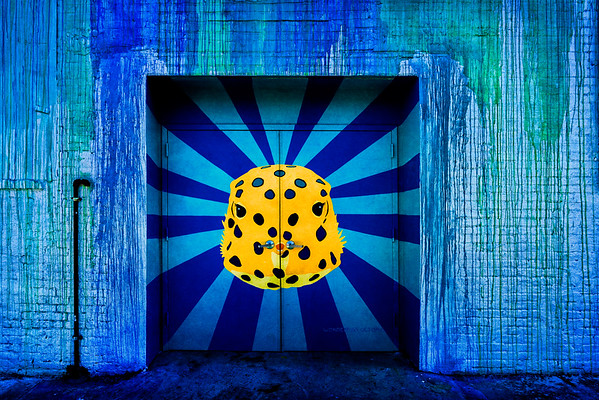 Theme Door