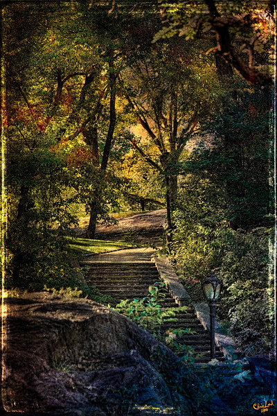 Steps into Sunset in Central Park