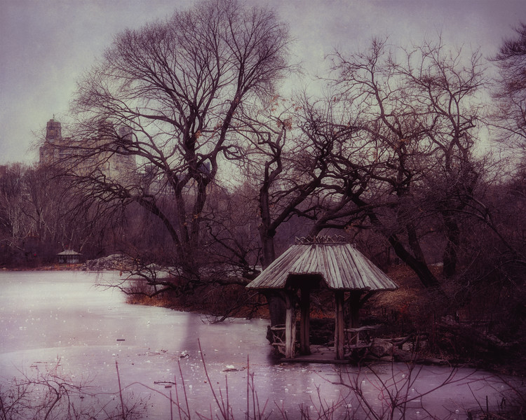 Winter Shelter, Central Park