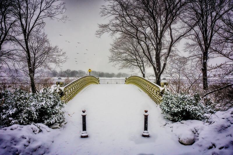 Winter by the Reservoir Bridge