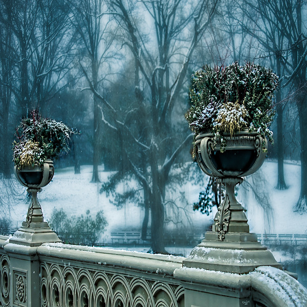 Bow Bridge Flower Urns, Central Park