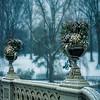 Bow Bridge Flower Urns, Central Park