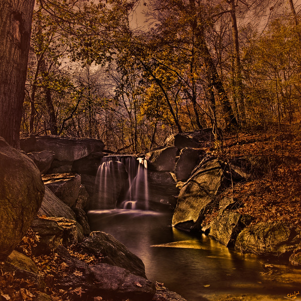 Autumn At The Waterfall. In The Ravine, North Woods, Central Park