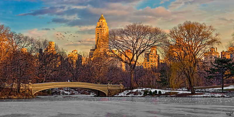 Central Park, Bow Bridge In Winter