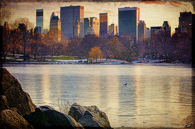 Danger Thin Ice in Central Park