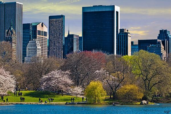 Spring Arrives In Central Park