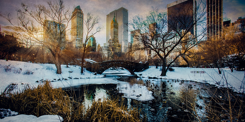 Good Morning Central Park