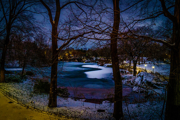 The Duck Pond On A Winter Night