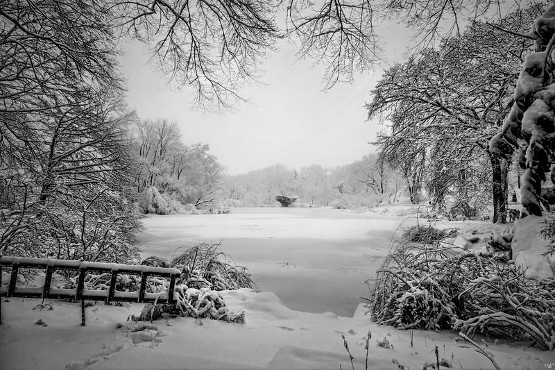 Winter Wonderland, Central Park in Snow