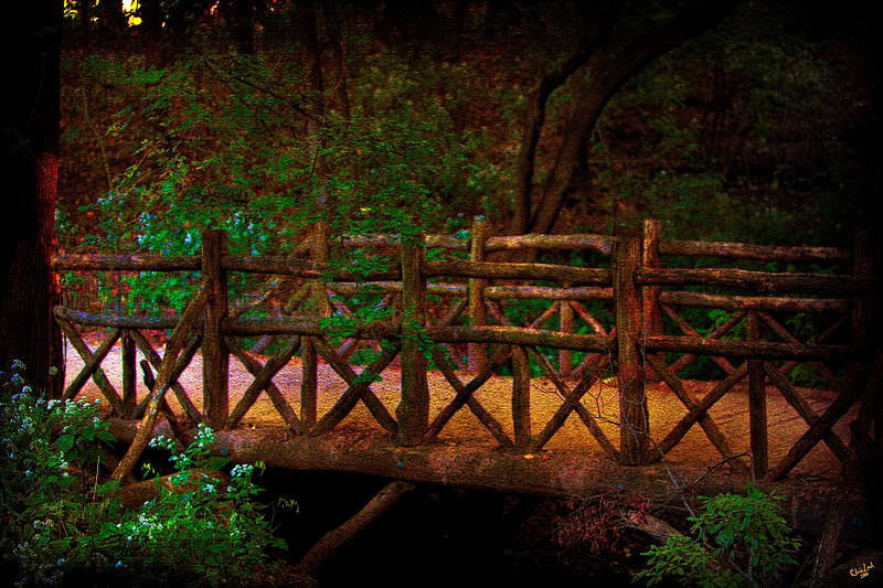 The Rustic Bridge in Central Park