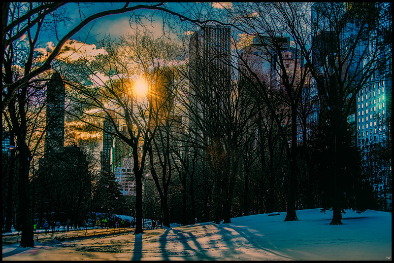 Winter Sunrise In Central Park